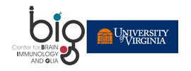 University of Virginia - Center for Brain Immunology and Glia (BIG)