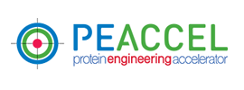 PEACCEL - Protein Engineering Accelerator