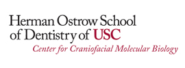 University of Southern California - Center for Craniofacial Molecular Biology