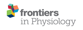 Frontiers in Physiology