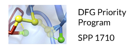 Deutsche Forschungsgemeinschaft (DFG) - Priority Program SPP 1710 - Thiol Switches