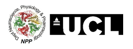 University College London - Department of Neuroscience, Physiology and Pharmacology (NPP)