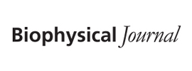Biophysical Society - Biophysical Journal