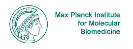 Max Planck Institute for Molecular Biomedicine