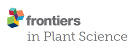 Frontiers - Frontiers in Plant Science