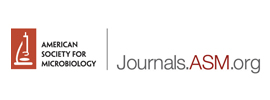 American Society for Microbiology - ASM Journals