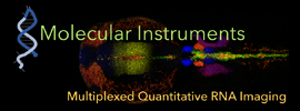 Molecular Instruments, Inc.