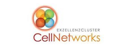 Heidelberg University - CellNetworks Excellence Cluster