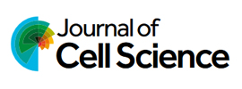 The Company of Biologists - Journal of Cell Science