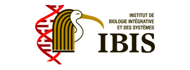Université Laval - Institute of Integrative Biology and Systems (IBIS)